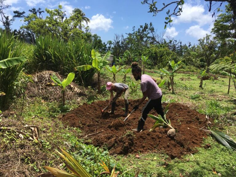 Range Developments Support Dominica Permaculture