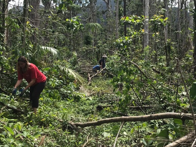 Waitukubuli National Trail Repair