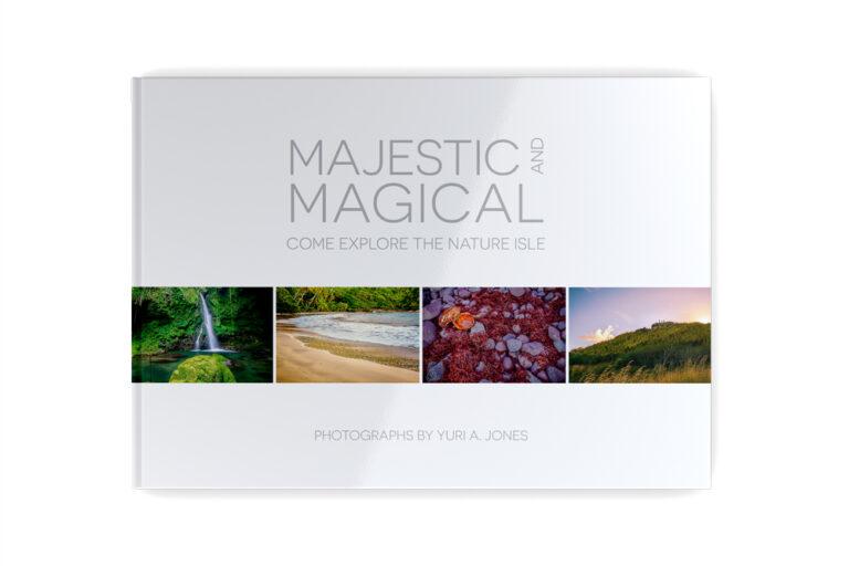 Majestic & Magical Art Project by Yuri Jones