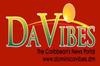 DaVibes logo