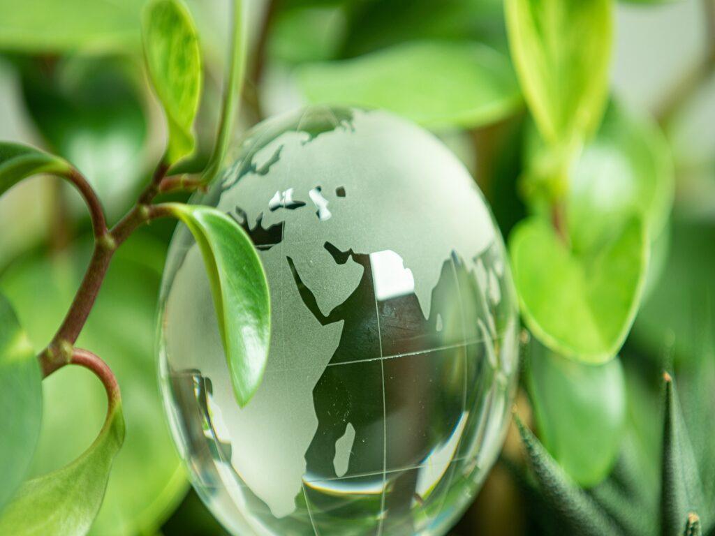 Fostering Entrepreneurial Spirit Through Focused Corporate Social Responsibility Initiatives.